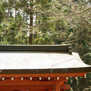 銅を加工することにより湾曲したこだわりを交えた屋根を演出
