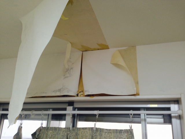 雨漏りの際、家の中への被害ってどんなものがある?