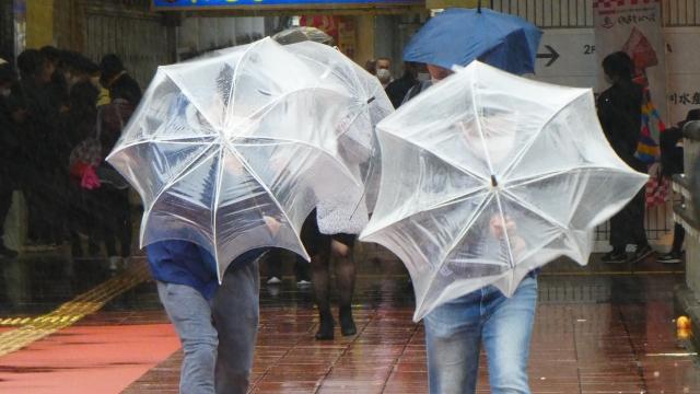 被害が出る前に!雨漏りを予防する方法のまとめ